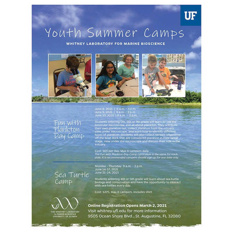 Whitney Summer Camp Flyer
